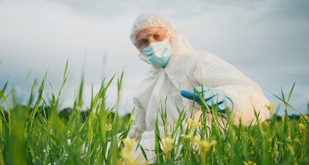 Modifications génétiques et environnement